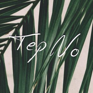 """Enigmatic Canadian DJ/Producer Tep No releases vibrant new single """"I'm Evil"""" on Ultra Music"""