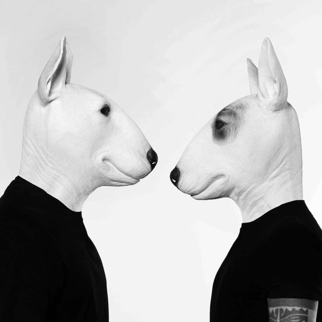 Neverdogs spark Bamboleo Records