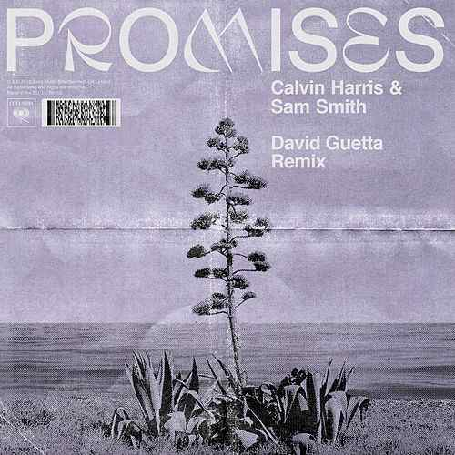 Calvin Harris, Sam Smith - Promises (David Guetta Remix)