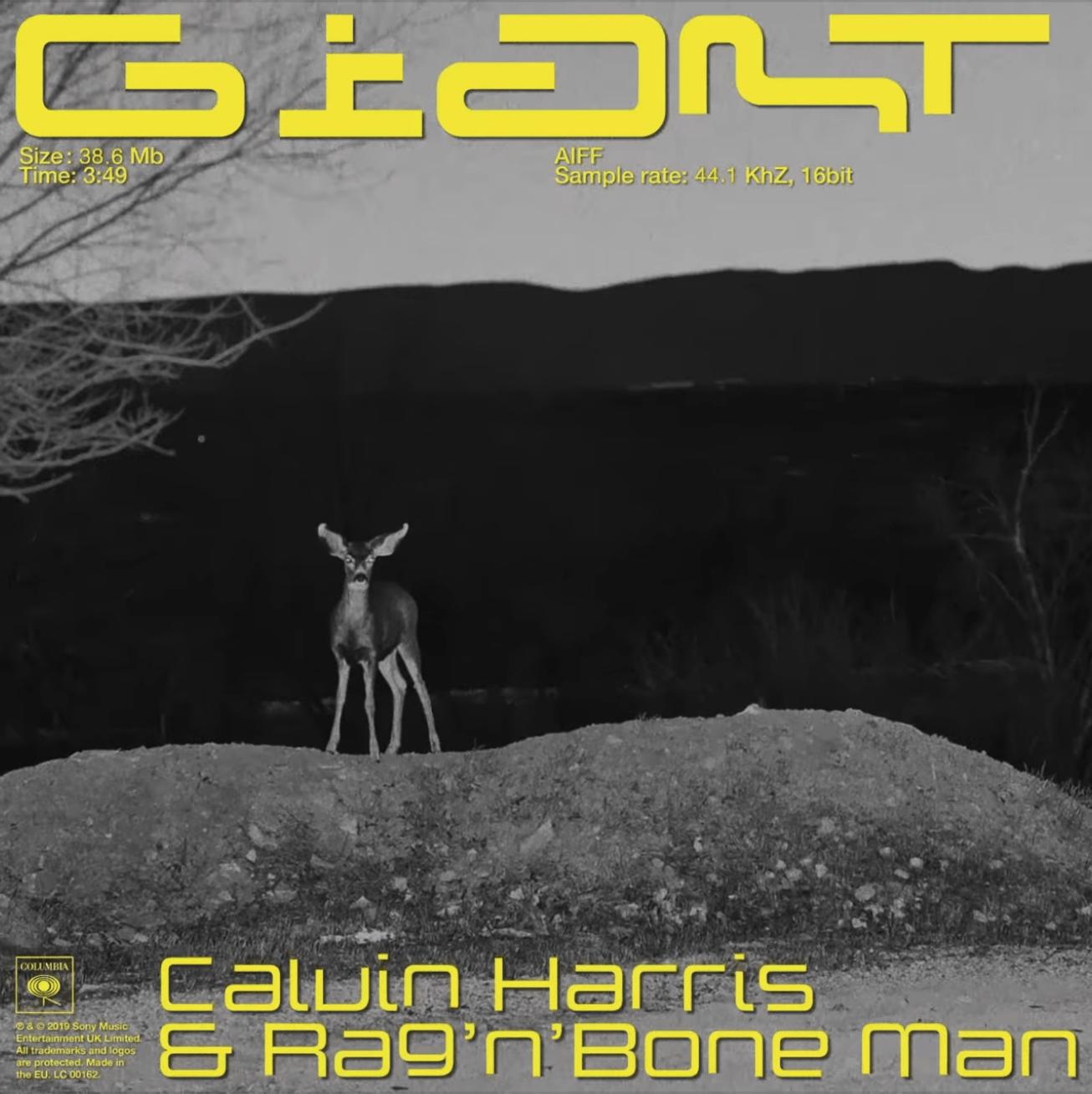 "Calvin Harris teams up with Rag'N'Bone Man for ""Giant"""