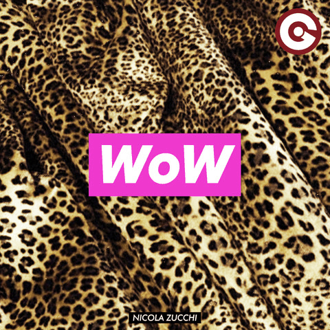 """WoW"" is the new house single from Nicola Zucchi"